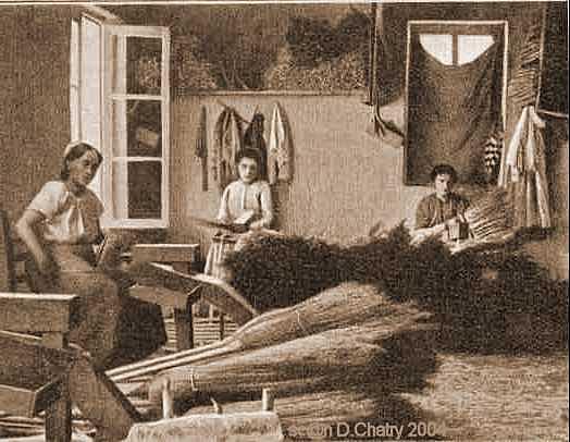 Travail Du Bois Metier - Les différents métiers et activités liés au travail du bois